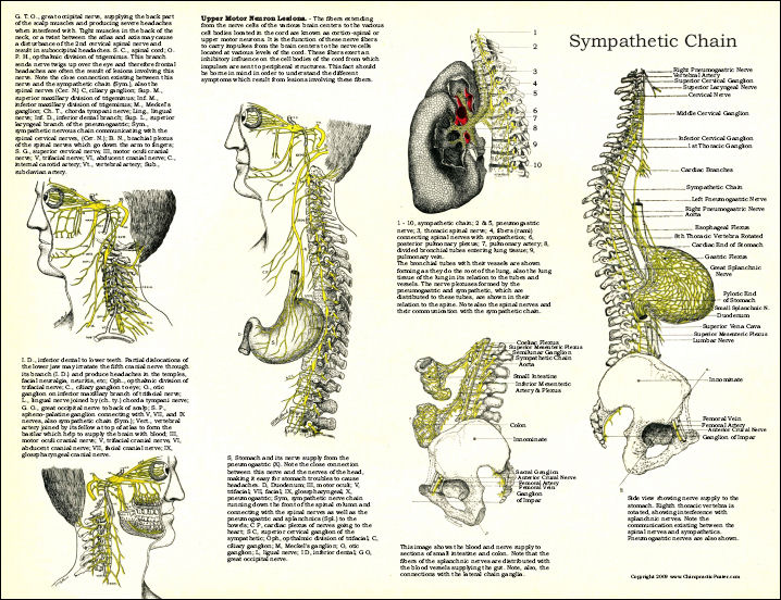 Osteopathic Poster
